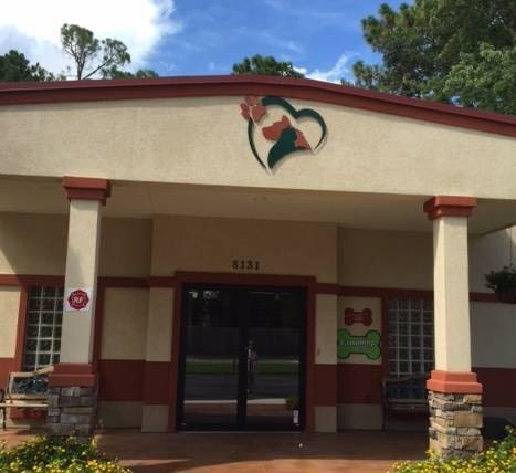 King Trails Animal Hospital in Jackson, Florida