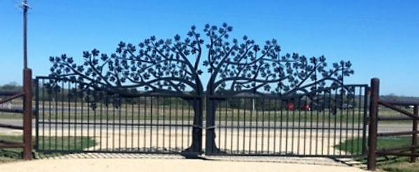 Oak Tree Ranch Gate