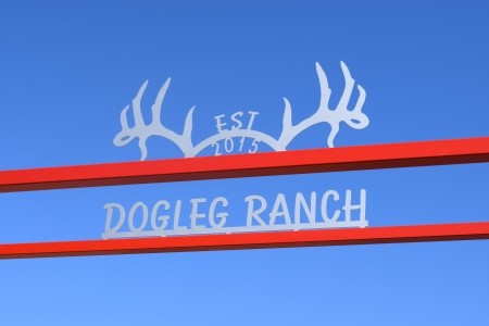 Dog Leg Ranch - Amarillo, TX - 8 Foot Antlers