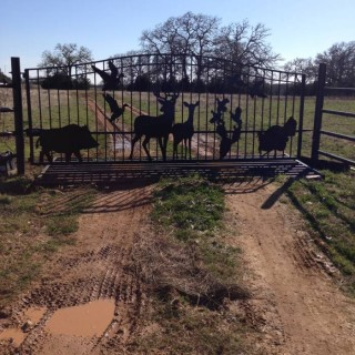 Giddins Texas gate