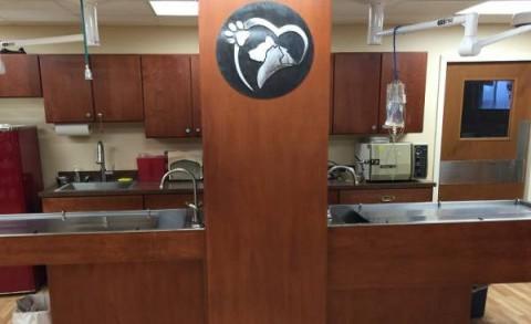 Florida Veterinary Clinic