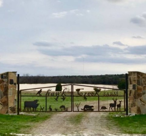 Hawk_Creek_Farm_Metal_Art_Gate