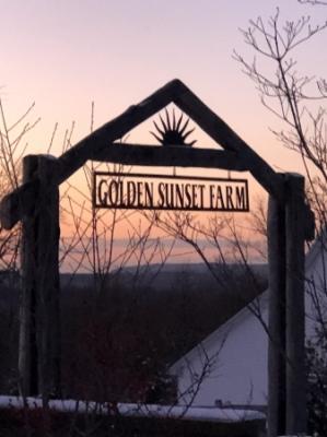 Golden_Sunset